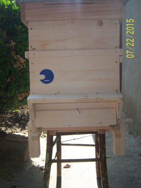 6. Снимка на кошери дадан блат